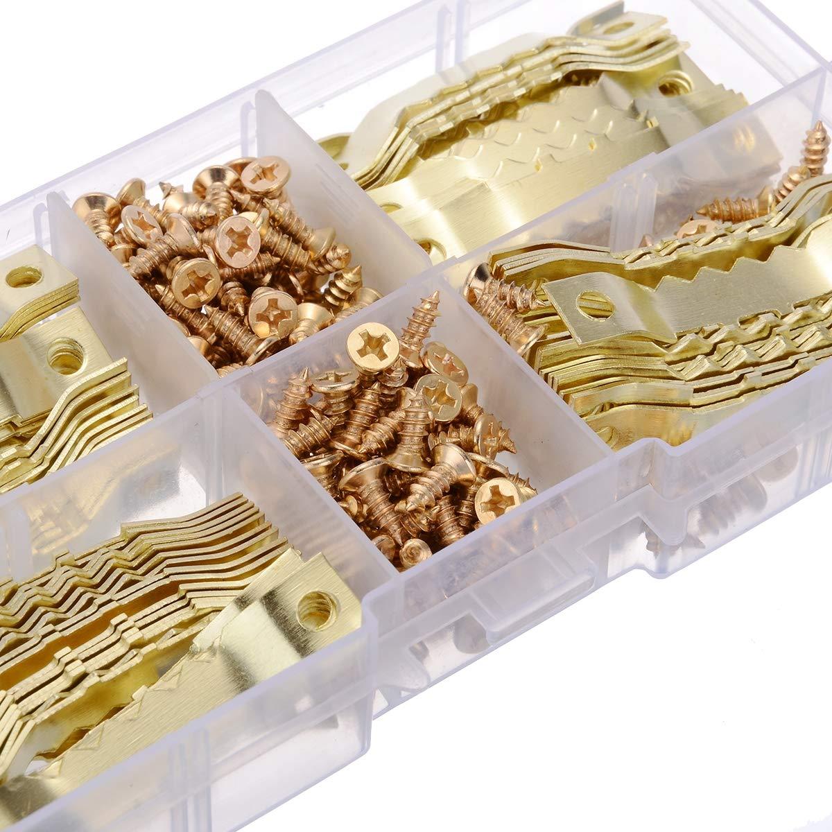 JZK 100 x Golden Bildaufh/änger Zackenaufh/änger Doppel-Loch /& 200x Schrauben mit Fachkasten f/ür Kunst Foto Bild Segeltuch Malerei