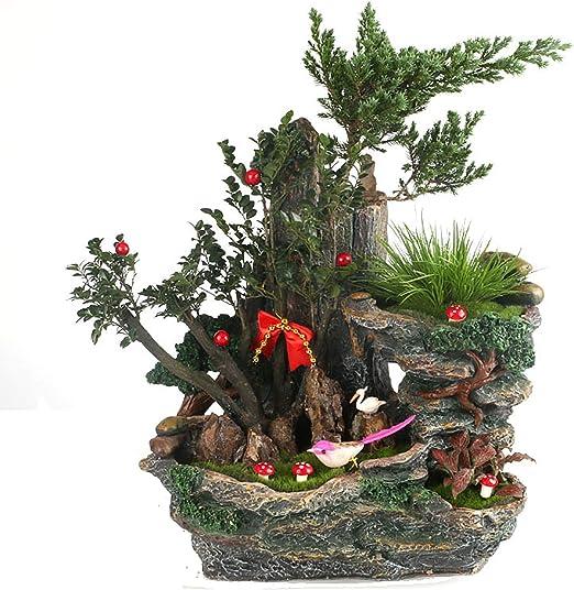 FD2LB1NVL Jardín de Hadas Suculentas Plantas Maceta Resina Miniatura Recipiente de tocón con Dulce hogar para decoración Gran Regalo de Bricolaje (sin Plantas): Amazon.es: Jardín