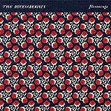 Florasongs-Ep [Vinyl Single]