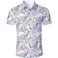 ALISISTER Camisa Hawaiana Hombre Estampado en 3D Botón Informal Abajo Playa Camisa Manga Corta Aloha de Vacaciones…