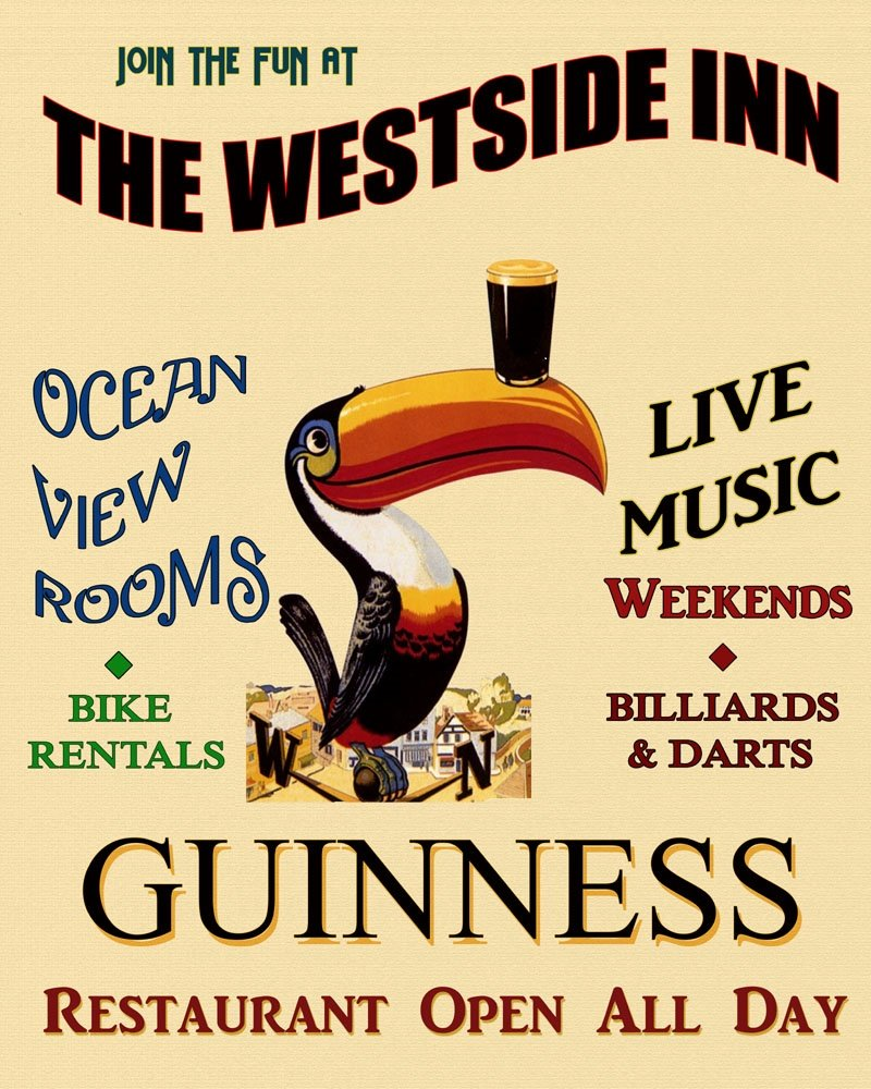 Amazon.com: Toucan Guinness Irish Ireland Live Music Billiards Darts ...
