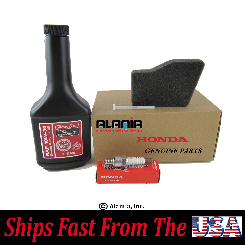 Amazon.com: Alamia, Inc. Generador original Honda EU1000i ...