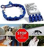 ZaZaTool - XXL Size Perfect Dog Command Collar Training Pets Prong Choke Chain