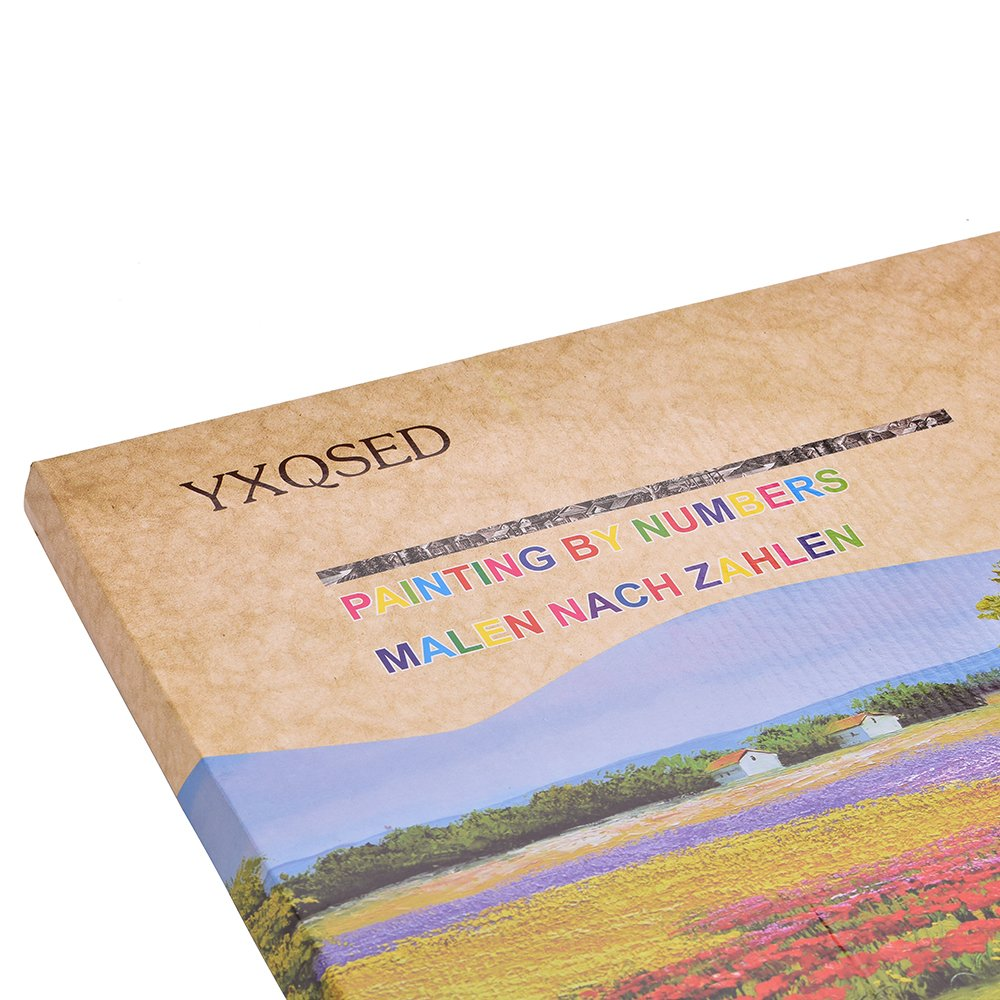 YXQSED Pack of 3[Wooden Framed] DIY Oil Painting Paint by Number Kit for Adults Kids Students Beginner Canvas with Brushes and Acrylic Pigment - Retro Flowers 16x20 inch by YXQSED