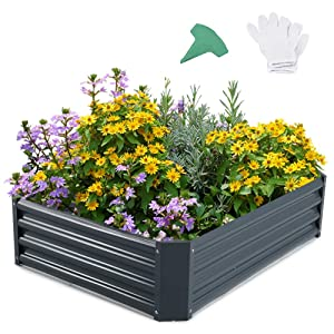 GROWNEER 48 Inches Dark Gray Metal Raised Garden Bed with 1 Pair of Gloves and 15 Pcs Plant Labels, Elevated Planter Box for Vegetables, Fruits, Flowers, Herbs