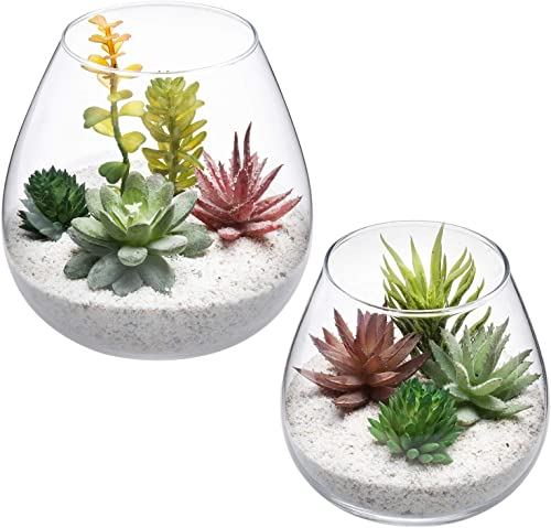 MyGift Clear Glass Round Plant Terrariums Ornament Display Vases, Set of 2