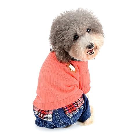 Zunea - Traje de chándal para Perro, Ropa para Perros pequeños, niñas, niños, Invierno cálido, Traje para Mascota Suave