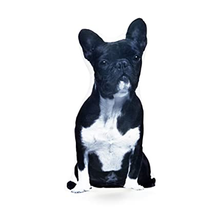 d0c1b1a25fd4 Cushion French Bulldog Black and White Shaped Pillow - with Real Life  French Bulldog Size of