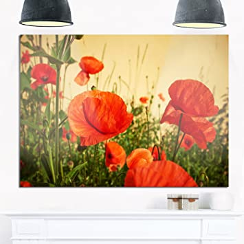 Amazon.com: Designart MT13853-40-30 Colorful Red Poppy Flower Field ...