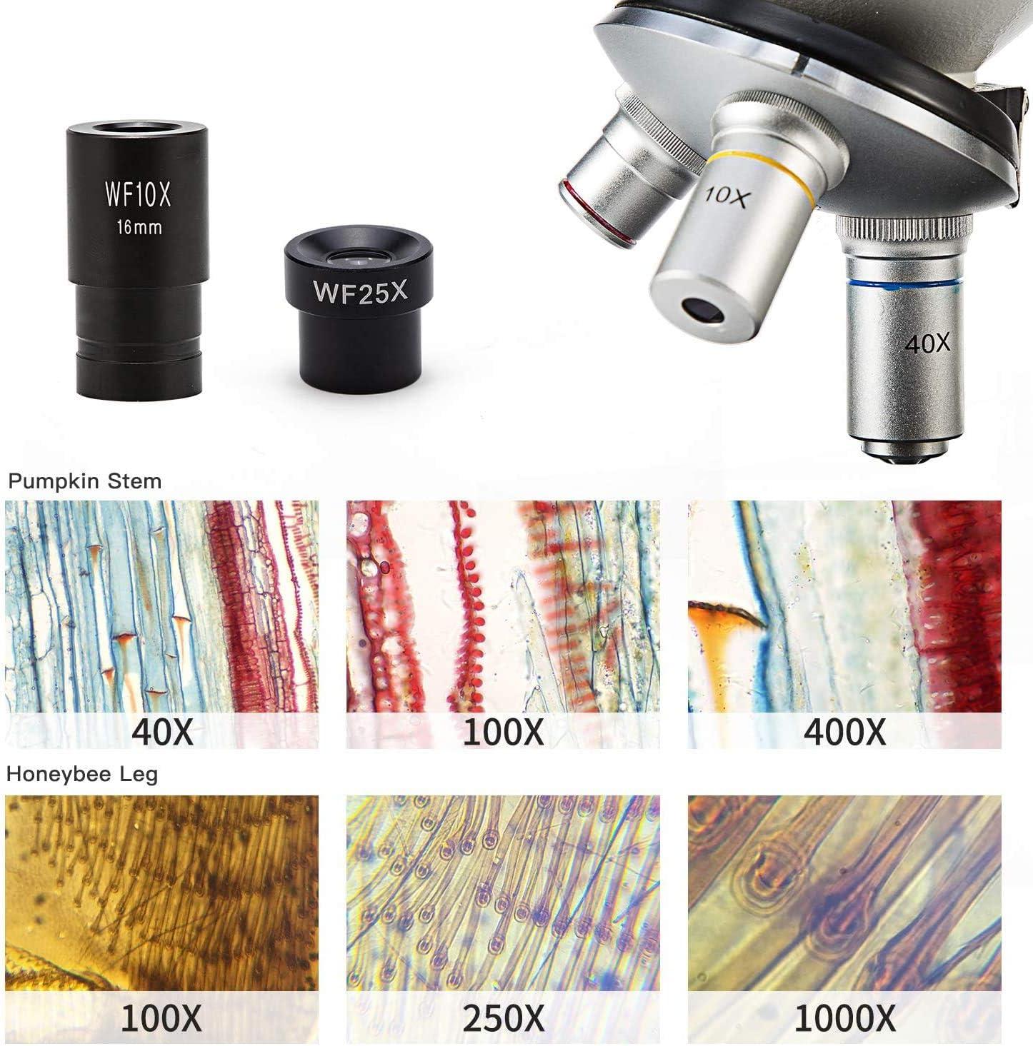 con testa monoculare Swift Optical SS52-WF25x-LED 40X-1000X telaio in metallo illuminazione a LED Set di microscopio con ingrandimento oculare aggiuntivo 25X effetto vetro