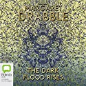 The Dark Flood Rises Audiobook by Margaret Drabble Narrated by Maggie Ollerenshaw