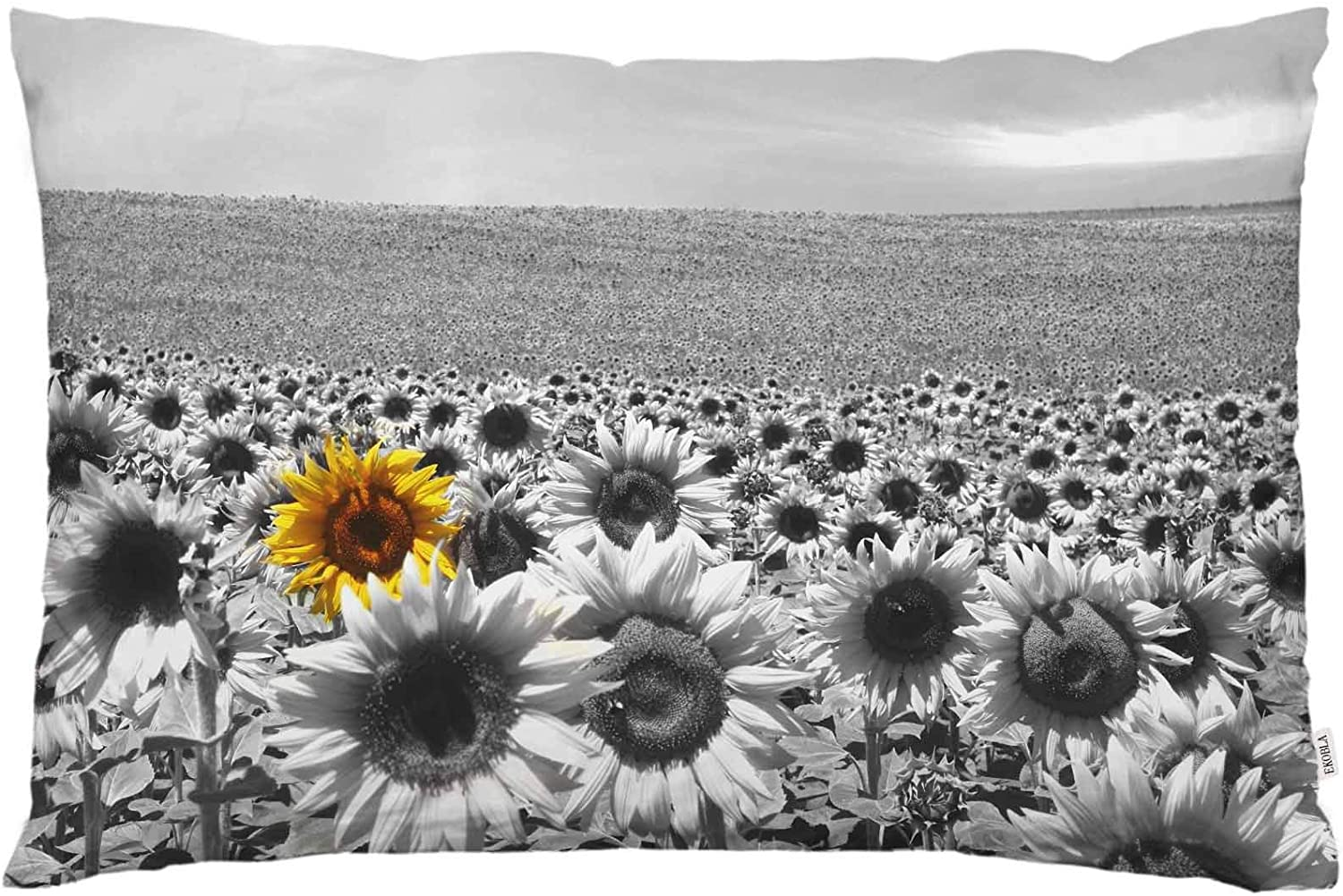 EKOBLA Throw Pillow Cover Sunflowers Vintage Floral Design Oil Painting Summer Autumn Blossom Wildflowers Plant Decor Lumbar Pillow Case Cushion for Sofa Couch Bed Standard Queen Size 20x30 Inch