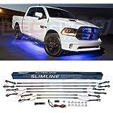 Amazon.com: PlasmaGlow 10240 Blue 10\' Neon GloWire: Automotive