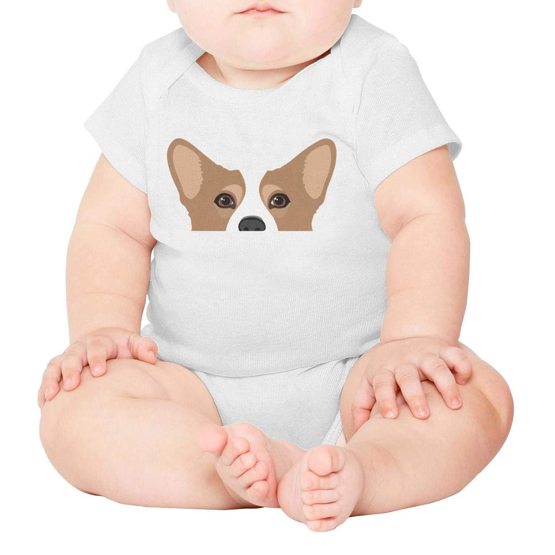 Cute Corgi Dog Newborn,Baby Onesies,Baby Onesie} Outfits Unisex One-Piece Cotton Short Sleeve