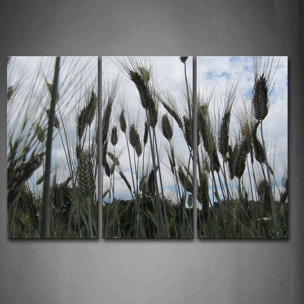 First Wall Art - Green Wheat Field Wall Art Painting The Picture Print On Canvas Flower Pictures for Home Decor Decoration Gift