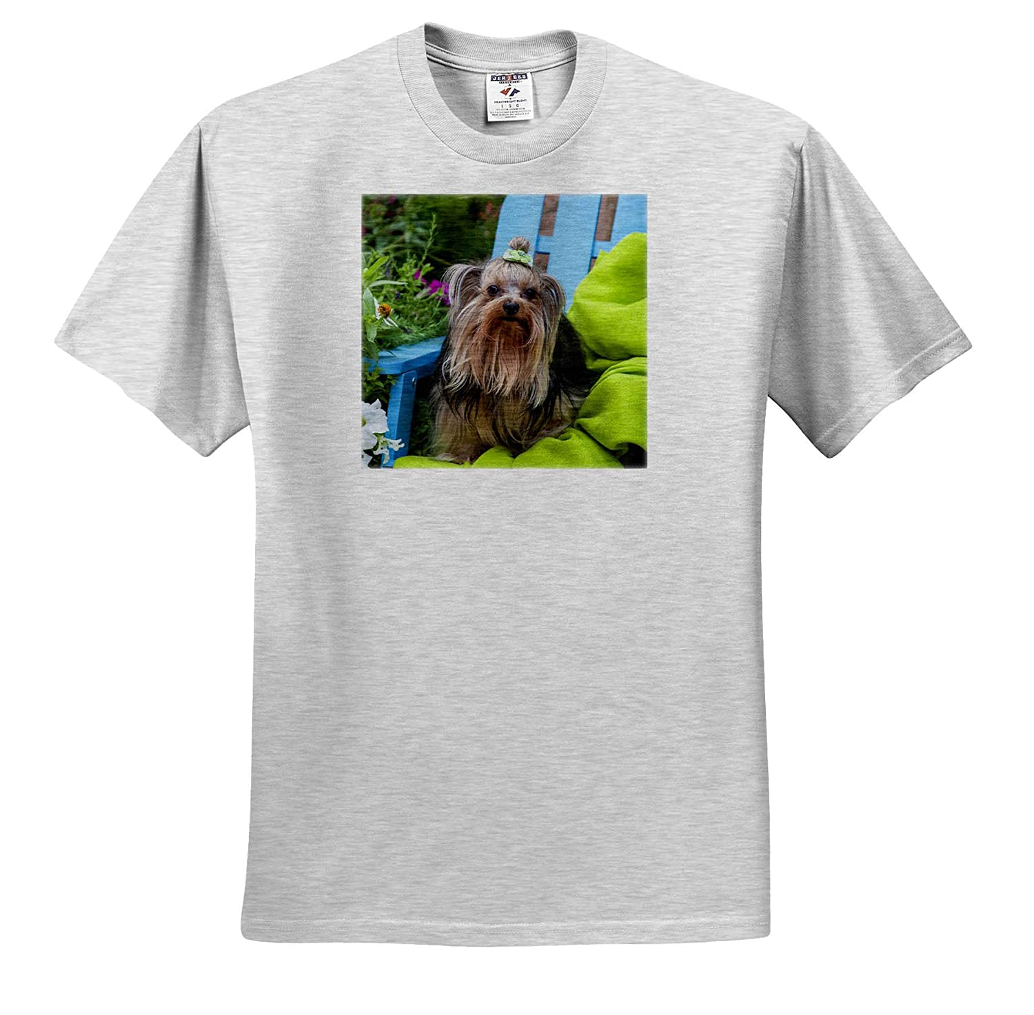 Dogs 3dRose Danita Delimont Adult T-Shirt XL Yorkshire Terrier Sitting on Blue Chair with Green Fabric ts/_314004