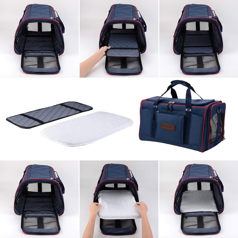 32 Katzenbox Transportbox 33 cm Blau f/ür Gro/ße Katzen Kaninchen 51 Legendog Faltbar Airline Genehmigt Transportbox f/ür Katzen mit Matte Leichte Reisetasche Tasche
