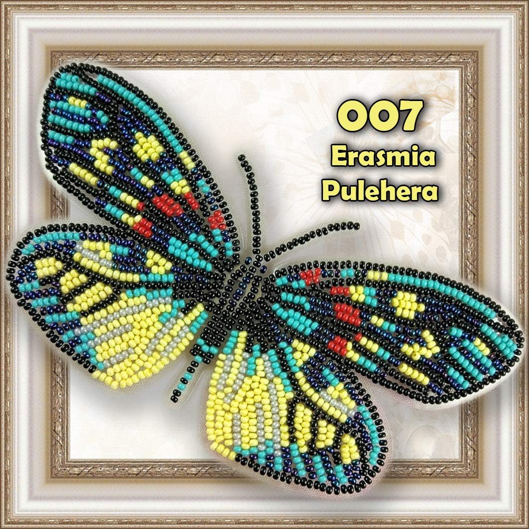 Butterfly Bead Embroidery kit Counted Beaded Cross Stich Beading on Plastic Canvas Bead Pattern Needlework Counted Glass Beads Kits Perle 007