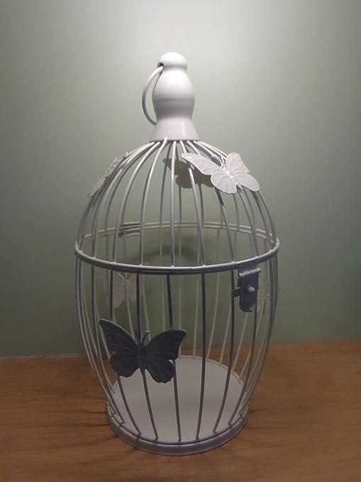 Emeia - Portavelas, Diseño de Jaula de Pájaros y Mariposas, Color ...