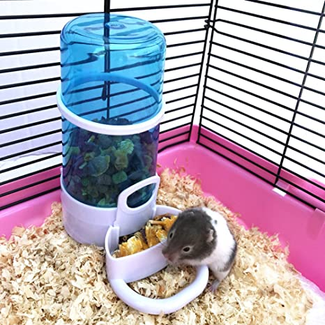 Amazon.com : Be Good Automatic Pet Feeder for Hamster Bird Pigeon Parrots Rabbits Mini Hedgehog Small Animal Solid and Durable Automatic Feeding Device ...