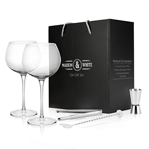 Gin Glass Set de regalo | 2 vasos de ginebra, cuchara de cóctel ...