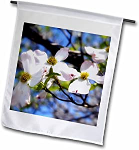 3dRose fl_182250_1 Dogwood Flow is a Branch Filled with Dogwood Blossoms Garden Flag, 12 by 18-Inch