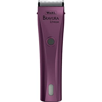 cheap Wahl Bravura 2020