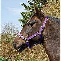 Rhinegold Nylon Headcollar-X Full-Purple Cabezada de Nailon