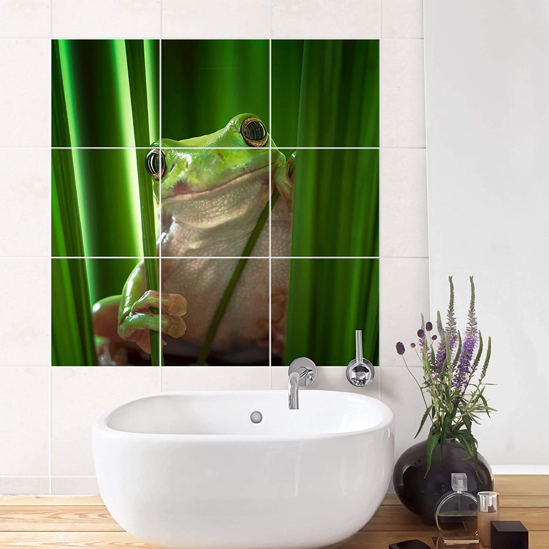 Bilderwelten Fliesenaufkleber Fröhlicher Frosch Fliesengröße 20 x x x 15cm, Größe 60 x 60cm B07K8K87L8 Fliesenaufkleber 5ddf67