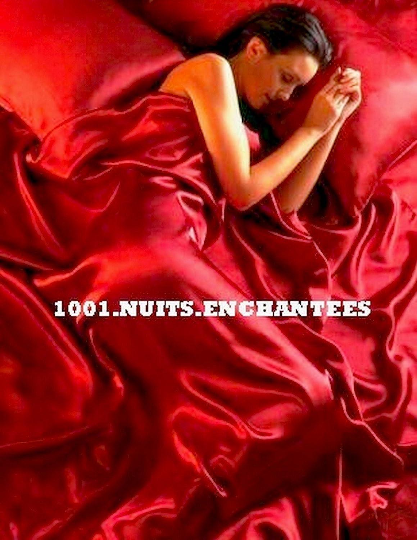 Parure de Lit Satin Rouge 6 pcs Housse de Couette 200x200 Taies Drap Housse lit 135 x 190 cm