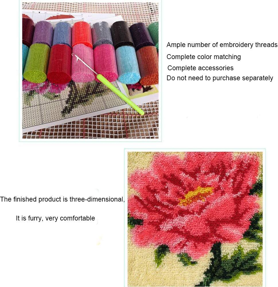 TQQT Latch Hook Rugs Kits DIY Cushion Carpet Mat Pillowcase Cover Hand Craft Cartoon Embroidery Crocheting for Adults Kids Parents Gifts