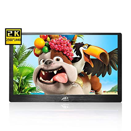 Portable Monitor 13 3 inch 2k Resolution IPS Display 2560x1440 with Dual  HDMI Interface, USB Powered Built-in Speakers for PS2 PS3 PS4 Xbox One