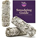 PURPLE CANYON White Sage Bundles - (3 Pack) - Sage Smudge Stick for Home Cleansing Incense Healing Meditation and California
