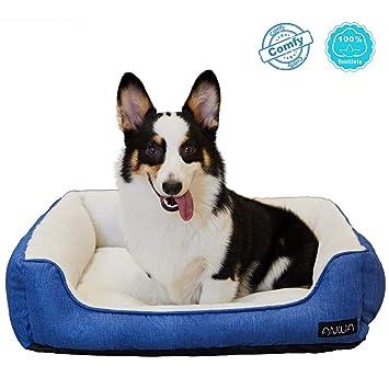Amazon.com: ANWA Cama para perros de tamaño mediano ...