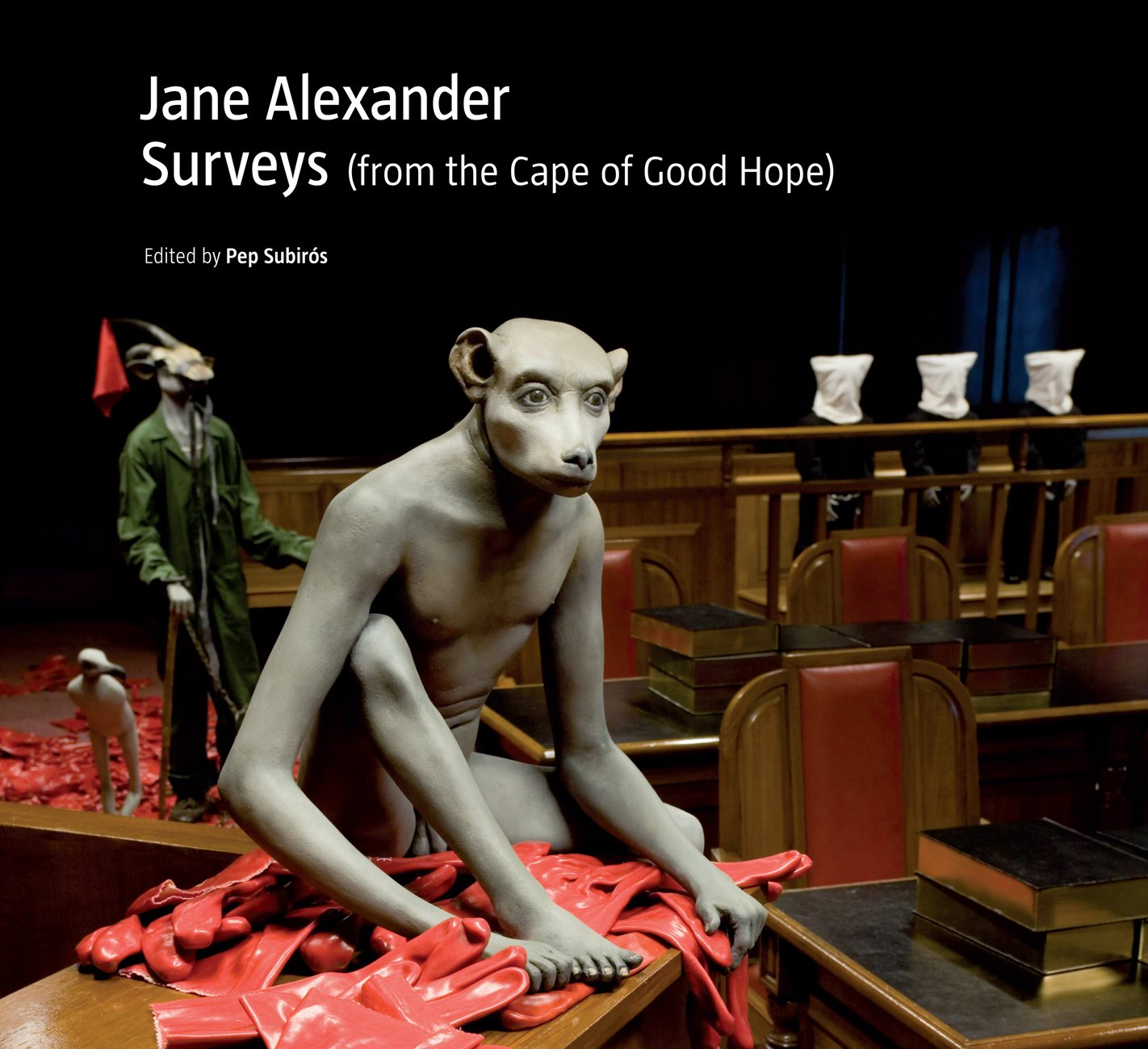 Download Jane Alexander: Surveys (from the Cape of Good Hope) PDF