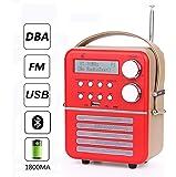 D&L Mini Radio Digitale DAB con Giocare FM, Bluetooth e USB, Funzione Orologio e Sveglia Impostati con Batteria Ricaricabile (1800 mAh)