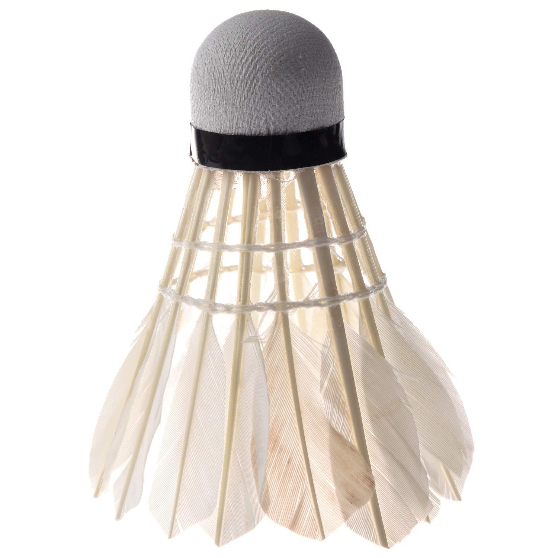 JVSISM 6PCS White Feather Shuttlecocks Badminton