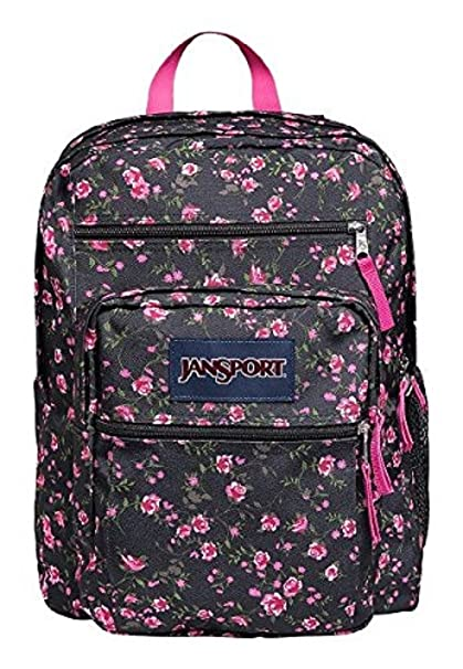 Amazon.com  JanSport Big Student Classics Series Daypack - Pink Rose ... accfc0accd