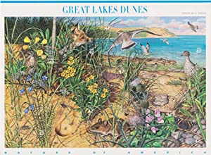 Great Lakes Dunes (Nature of America) Full Sheet of 10 x 42-Cent Postage Stamps, USA 2008, Scott 4352