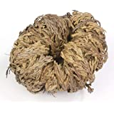 Incense Garden Rose of Jericho Flower The Resurrection Plant (6 Roses)