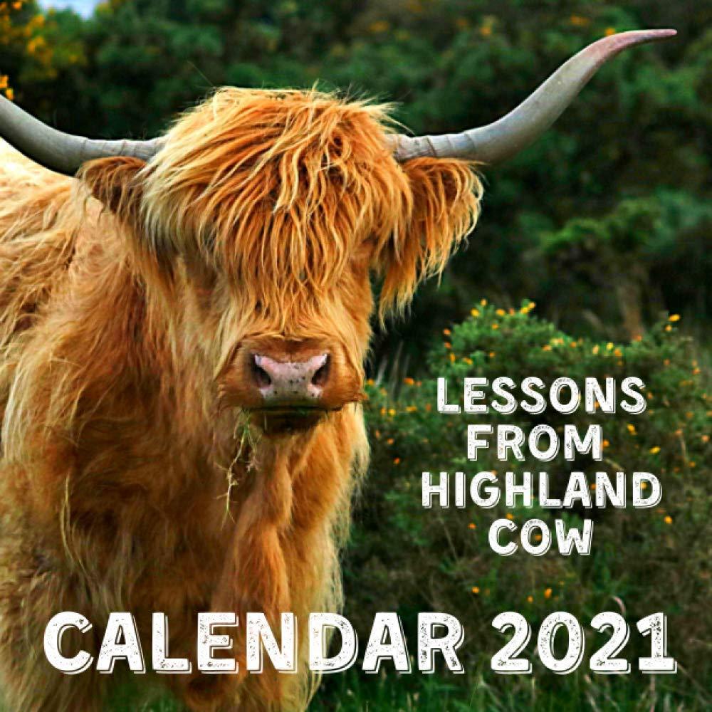 Lessons From Highland Cow Calendar 2021: November 2020   December