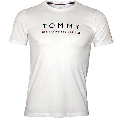f8b100faf Amazon.com  Tommy Hilfiger Logo Crew-Neck Boys T-Shirt