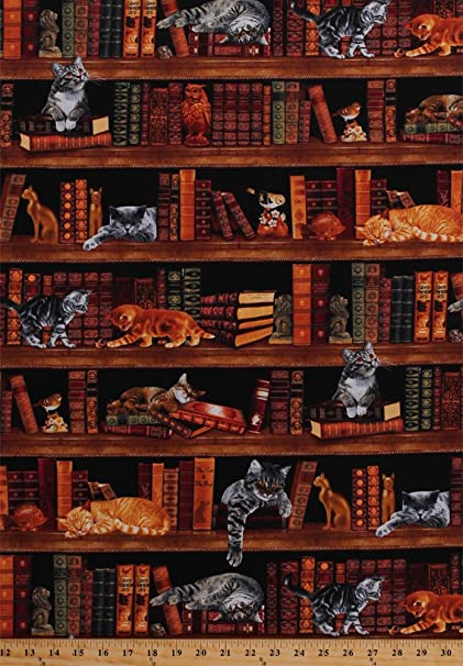 cotton cats kittens books library bookshelves bookcase bookworm librarians bibliophile reader animals birds owls figurines realistic - Library Bookshelves
