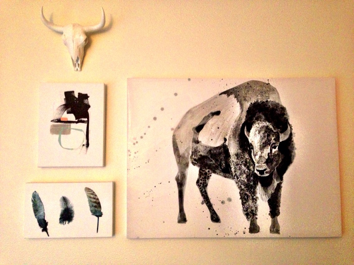 Amazon.com: Near and Deer Faux Taxidermy Bison Skull, White: Home ...