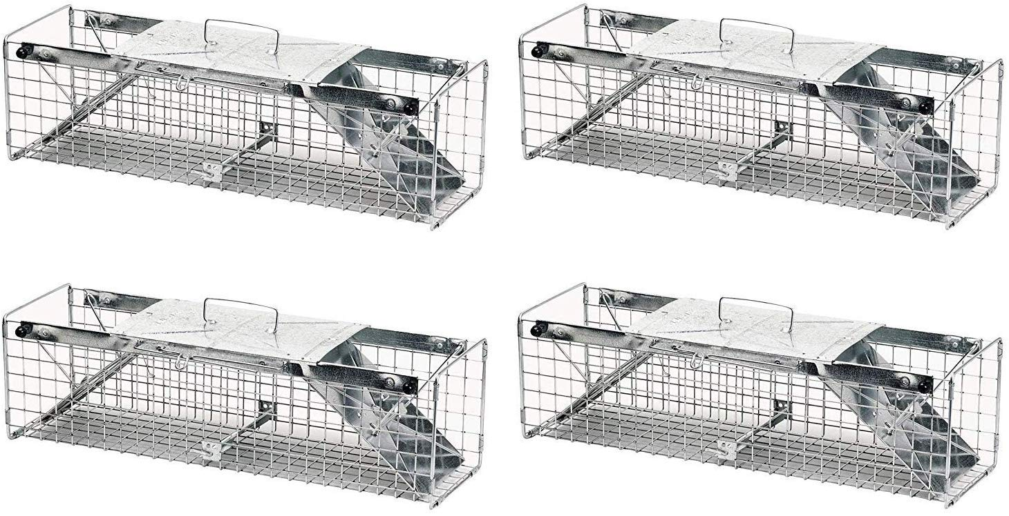 Havahart 1030 Live Animal Two-Door Rabbit, Squirrel, Skunk, and Mink Cage Trap (Pack of 4) by Havahart