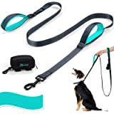 PuppyDoggy Double Handle Dog Leash 6 ft Long for Large and Medium Dogs Reflective Threads Stitching Leash with Two Traffic Pa