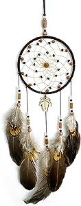 iceagle Dream Catcher Native American Dream Catcher for Boys Boho Feather Dream Catchers for Bedroom Wall Decor Handmade Wooden Life Dreamcatcher Weddings Parties Ornament Blessing Gift Brown