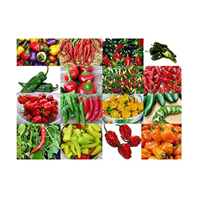 Please Read! This is A Mix!!! 30+ ORGANICALLY Grown Hot Pepper Mix Seeds, 16 Varieties Heirloom Non-GMO Habanero, Tabasco, Jalapeno, Yellow and Red Scotch Bonnet, Ships from USA : Garden & Outdoor