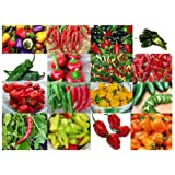 Please Read! This is A Mix!!! 30+ Hot Pepper Mix Seeds, 16 Varieties Heirloom Non-GMO Habanero, Tabasco, Jalapeno, Yellow and