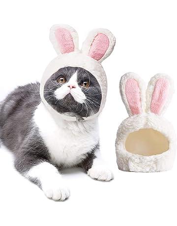 245d62736d5 Legendog Dog Cat Costume